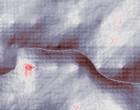 topographie terror